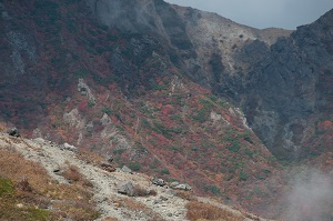 秋の紅葉、茶臼岳からの景色