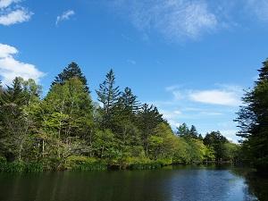 雲場池の紅葉シーズンは特におすすめ